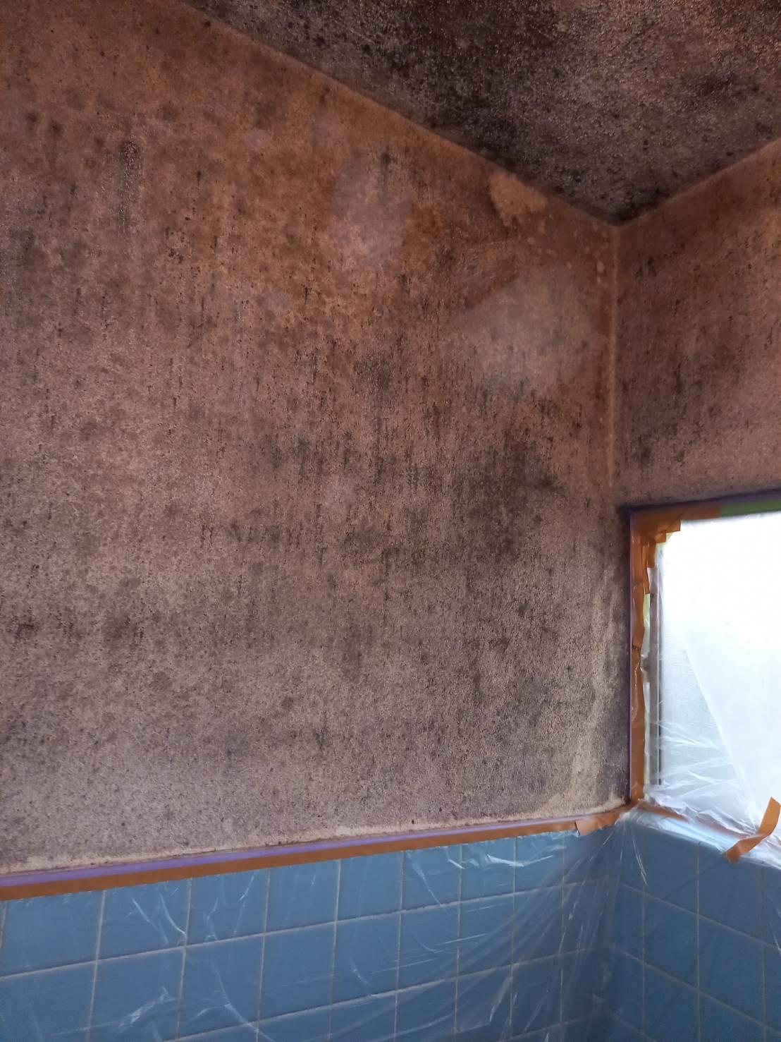 浴室の塗り替え